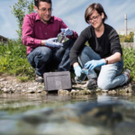 Umwelt DNA (eDNA) im Biodiversitätsmonitoring