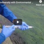Biodiversität beurteilen mit Umwelt-DNA