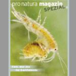 Interview im Pro Natura Spezial zum Tier des Jahres